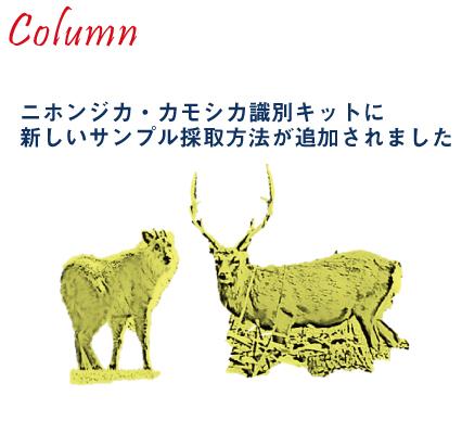 ニホンジカ・カモシカ識別キット