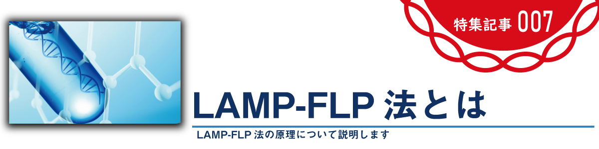 LAMP-FLP法とは