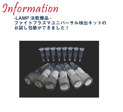 -LAMP法乾燥品- ファイトプラズマユニバーサル検出キットのお試し包装ができました
